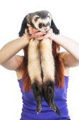 Red haired woman holding cute ferret — Stock Photo
