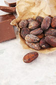 Chocolate and cocoa beans — Stock Photo
