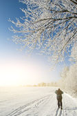 Man skiing through winter field — Stock Photo