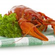 Stock Photo: One boiled crawfish with parsley on checkered serviette