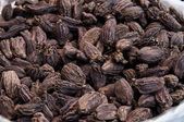 Indian black cardamom pods — Stock Photo