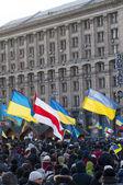 Oekraïnse volk eisen het aftreden van de regering en de vroege stemmen — Stockfoto