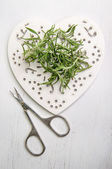 Rosemary with scissors on a wooden heart — Stock Photo