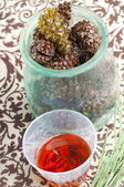 Pine cone cough syrup — Stock Photo