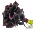 Black Calla Lilies wedding bouquet — Stock Photo #39425845