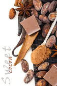 Spoon with cocoa powder and spices — Stock Photo