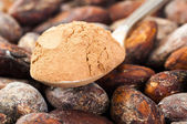 Cocoa powder in spoon — Stock Photo