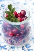 Fresh cranberries in jar — Foto Stock