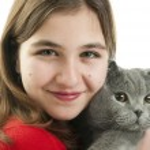 Girl with Scottish Fold cat — Stock Photo