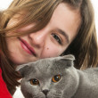 Teenager girl with Scottish Fold cat — Stock Photo