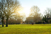 London Clapham Common park — Stock Photo