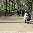 People walking in the park — Stock Video