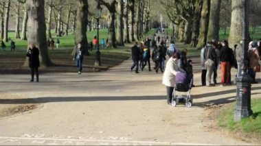 People walking in the park — Stok video