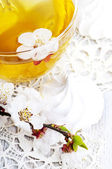Tea and apricot flowers — Stock Photo