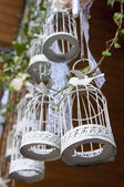 Decorative bird cages — Stock Photo