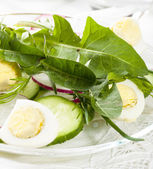 Spring salad with dandelion leaves — Stock Photo
