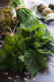 Greenness nettle for soup — Foto Stock