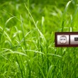 Electric outlet in grass.Ecology clean electricity concept. — Stock Photo #21732565