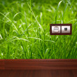 Electric outlet in grass.Ecology clean electricity concept. — Stock Photo #21732601