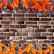Graffiti wall — Stock Photo