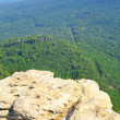 Top of the mountain with green forest above — Stock Photo