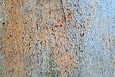 古いさびた金属の質感 — ストック写真