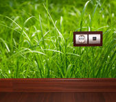 Electric outlet in grass.Ecology clean electricity concept. — Stock Photo