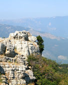 Top of the mountain with green forest above — Photo