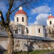 Stock Photo: Church of Holy Spirit towers in Vilnius