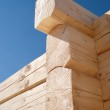 Log home construction detail — Stock Photo #8824227