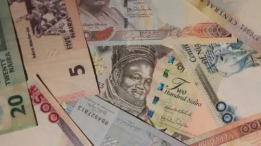 Nigerian naira background rotating — Stock Video