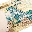 Stock Photo: Nigeribanknotes