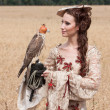 Woman with hawk on hand — Stock Photo #34784083