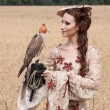 Woman with hawk on hand — Stock Photo