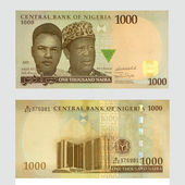 Naira,  currency of Nigeria — Stock Photo
