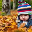 Мальчик в осенние листья — Стоковое фото
