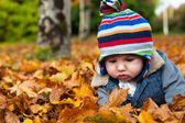 Baby boy in autumn leaves — Stock Photo