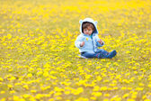 B in the field with spring flowers — Stock Photo