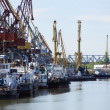 River docks with cranes and ships. — Stock Photo #28954191