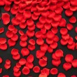 Red rose petals - 