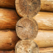 Log wall - Foto Stock