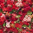 Abstract background of flowers — 图库照片