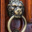 Lion head, brass door knocker — Stockfoto