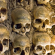 Wall full of skulls and bones - Stock Photo
