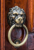Lion head, brass door knocker — Stock Photo