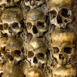 Wall full of skulls and bones in the bone chapel in Evora, Portugal — Stock Photo #25777985