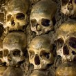 Wall full of skulls and bones in the bone chapel in Evora, Portugal — Stock Photo #25777989