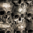 Wall full of skulls and bones — Stockfoto