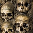 Wall full of skulls and bones — Stock Photo #34148233
