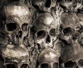 Wall full of skulls and bones — Stock fotografie